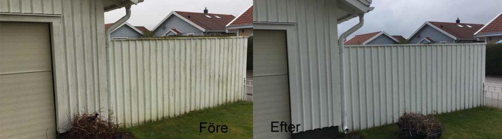 Vitt staket plank som är tvättat